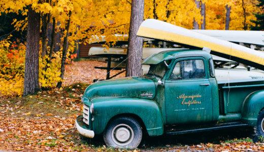 【アルゴンキン州立公園】カナダの紅葉を見に行こうよう。