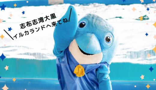 【鹿児島】志布志湾大黒イルカランドのショーが楽しい!
