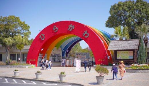 【鹿児島】小学生ぶりにホワイトタイガーのいる平川動物公園へ。
